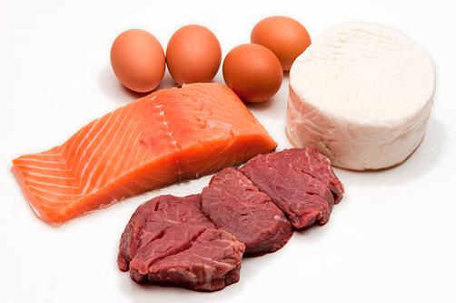 Какие продукты можно употреблять в рацион при белковой диете